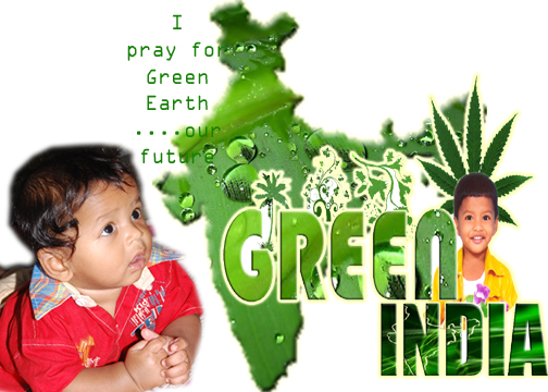 go green india essay Go green solar provides innovative solutions in the renewable energies sector, focusing its activity on solar power armed with the necessary technology and extensive experience in the construction and operation of photovoltaic power plants, go green solar offers its customers turnkey working systems from viability studies and.
